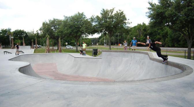 Domain Skateboard Magazine